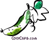 pepper Vector Clipart picture