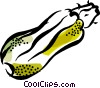 Vector Clipart graphic  of a squash