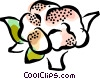 cauliflower Vector Clip Art graphic