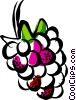 Vector Clipart illustration  of a raspberry