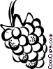 Vector Clip Art image  of a raspberry