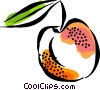 Vector Clip Art picture  of a peach
