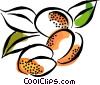 Plums Vector Clipart illustration
