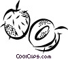 Vector Clip Art picture  of a peaches
