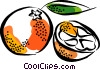 Vector Clip Art graphic  of a Oranges