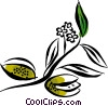 Fruit Vector Clipart picture