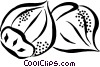 Vector Clip Art image  of a nuts