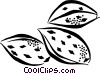 Vector Clip Art graphic  of an almonds