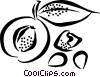 Vector Clipart image  of a peach