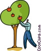 Vector Clip Art image  of a Man picking apples