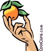 Hand picking orange Vector Clipart illustration