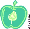 Sliced green apple Vector Clip Art picture