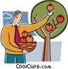 Businessman picking apples Vector Clip Art graphic