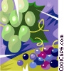 Vector Clip Art picture  of a Green and red grapes