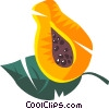 mango Vector Clipart illustration