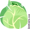 Vector Clipart graphic  of a cabbage