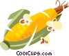 Vector Clip Art graphic  of a Corn on the cob