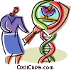 Vector Clip Art graphic  of a DNA