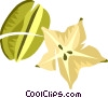 Vector Clipart illustration  of a Misc Fruit