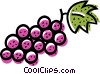 Vector Clip Art graphic  of a Grapes