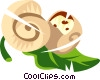 Snails Vector Clip Art graphic