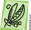 Peas Vector Clipart illustration