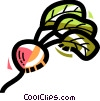 Radishes Vector Clipart illustration