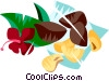 Brazil nuts Vector Clipart illustration