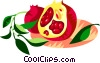 Vector Clip Art image  of a pomegranate