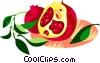 pomegranate Vector Clipart graphic