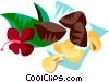 Vector Clipart graphic  of a Brazil nuts
