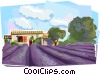 Vector Clipart picture  of a Lavender Gardens and House