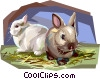 Vector Clipart picture  of a Rabbits