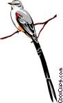 Scissor tailed flycatcher clipart - photo#16