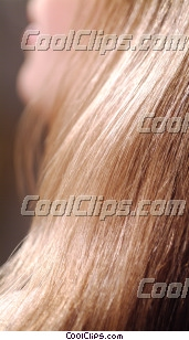 woman's hair Royalty Free Stock Photo Clipart wb043476