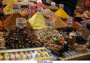 spices Royalty Free Stock Photo Clipart wb044891