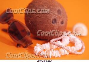 coconut, sunglasses and necklace Royalty Free Stock Photo Clipart wb045601