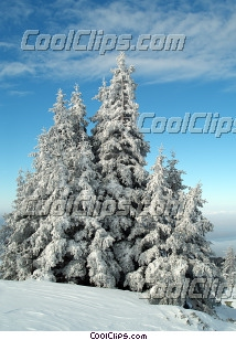 Forests Royalty Free Stock Photo Clipart wb046387