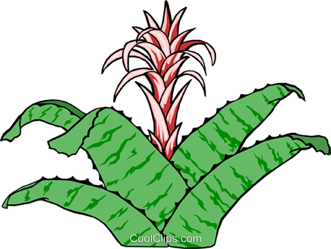 Plants Royalty Free Vector Clip Art illustration natu0084