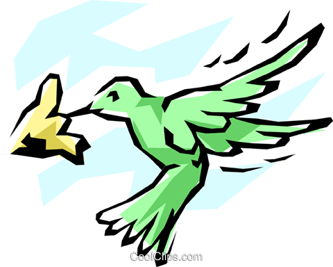 Hummingbird Royalty Free Vector Clip Art illustration anim0819