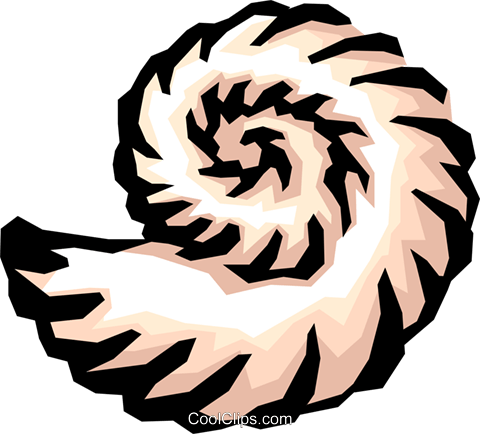 Seashells Royalty Free Vector Clip Art illustration anim0836