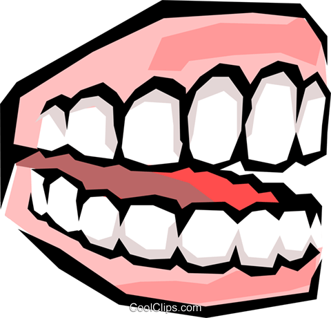 Teeth Royalty Free Vector Clip Art illustration medi0233