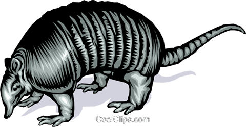 Armadillo Royalty Free Vector Clip Art illustration anim0033