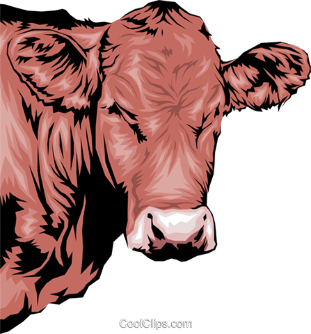 Cow Royalty Free Vector Clip Art illustration anim0036