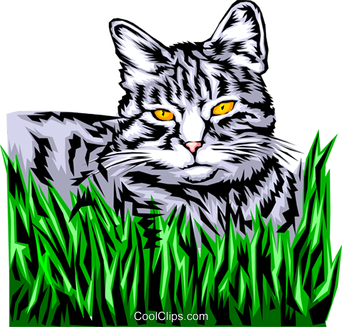 Domestic cat Royalty Free Vector Clip Art illustration anim0049