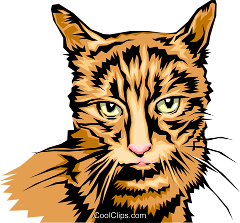 cool looking cat Royalty Free Vector Clip Art illustration anim0052