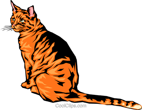 cool looking cat Royalty Free Vector Clip Art illustration anim0053