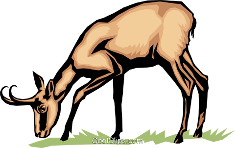 Antelope Royalty Free Vector Clip Art illustration anim0054
