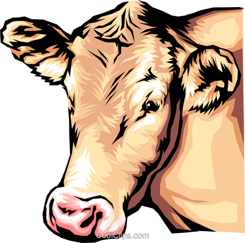 Brown Cow Royalty Free Vector Clip Art illustration anim0058