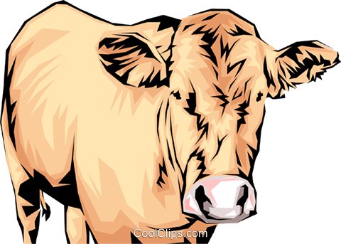 Cow Royalty Free Vector Clip Art illustration anim0059